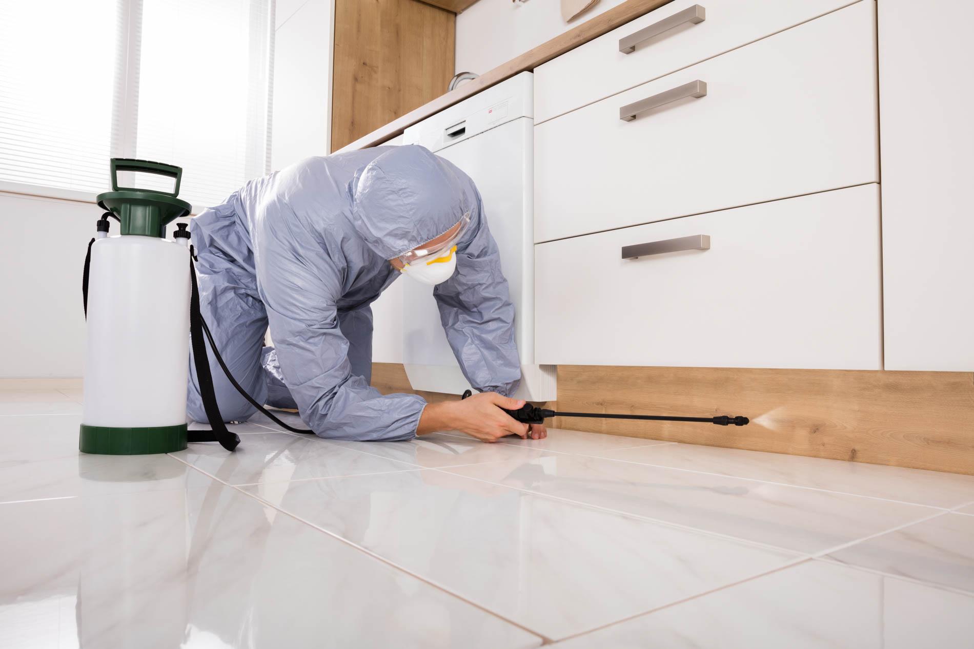 Exterminator,In,Workwear,Spraying,Pesticide,With,Sprayer