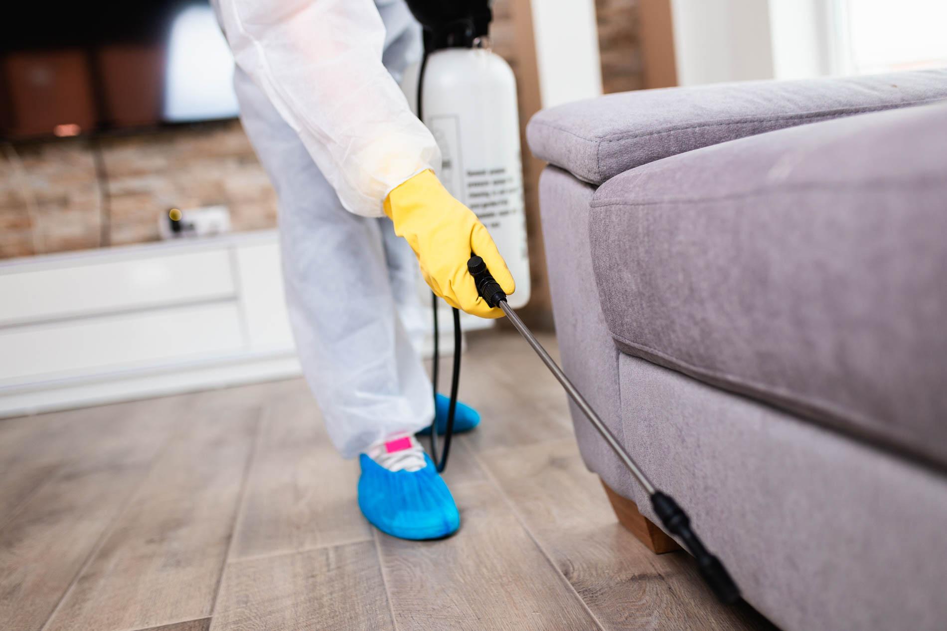 Exterminator,In,Work,Wear,Spraying,Pesticide,With,Sprayer.