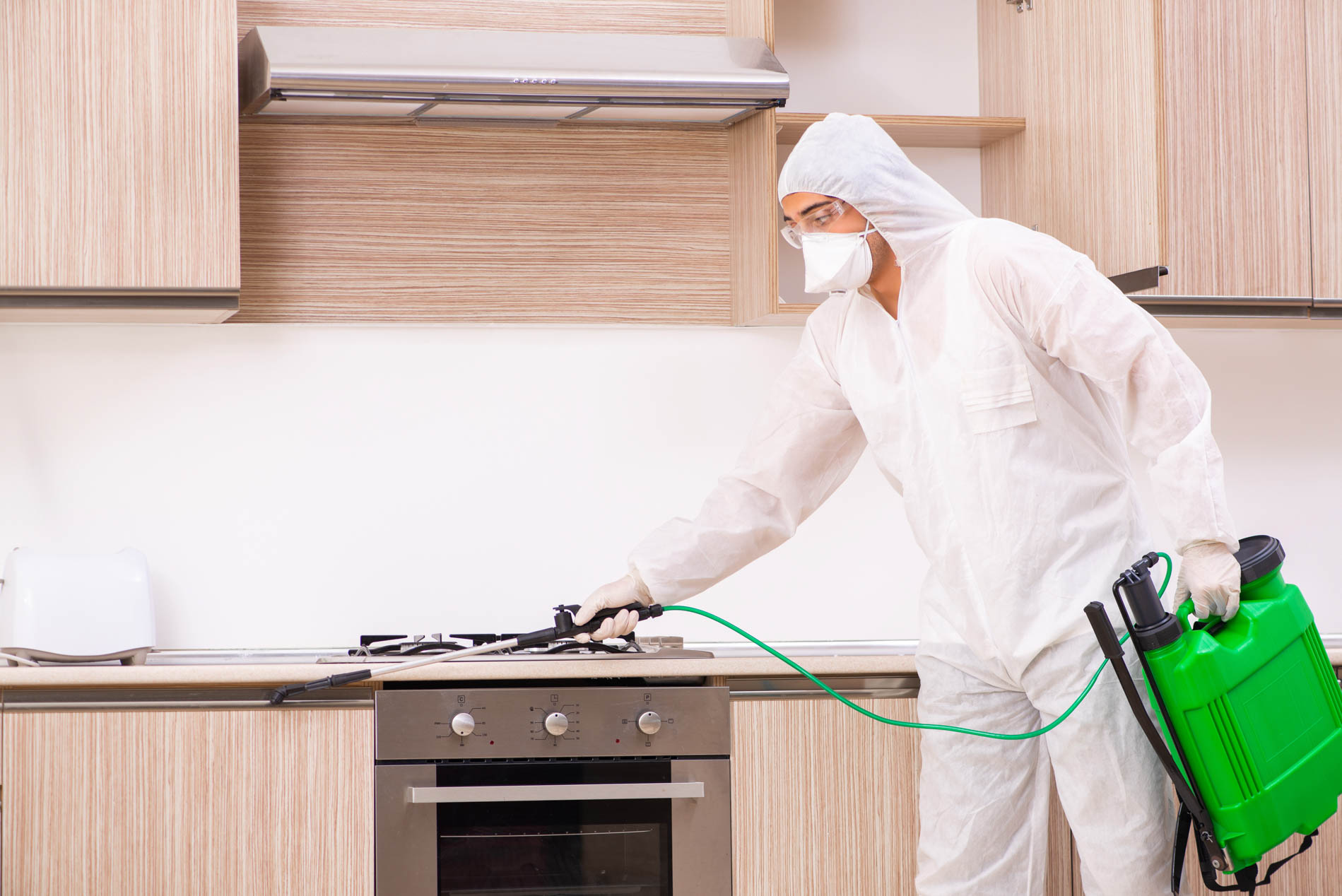 Professional,Contractor,Doing,Pest,Control,At,Kitchen