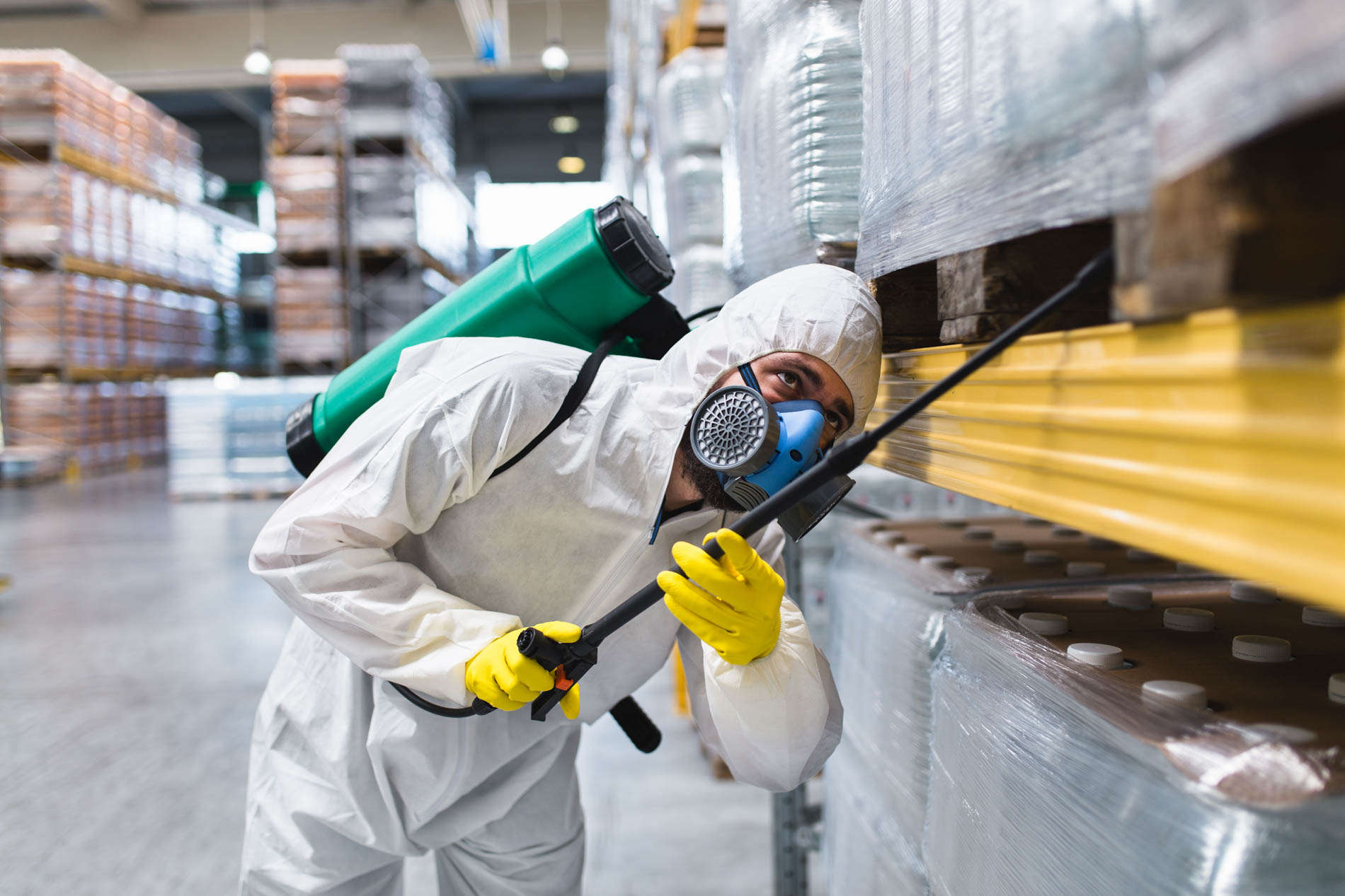 Pest,Control,Worker,Hand,Holding,Sprayer,For,Spraying,Pesticides,In